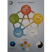 Five element: poster